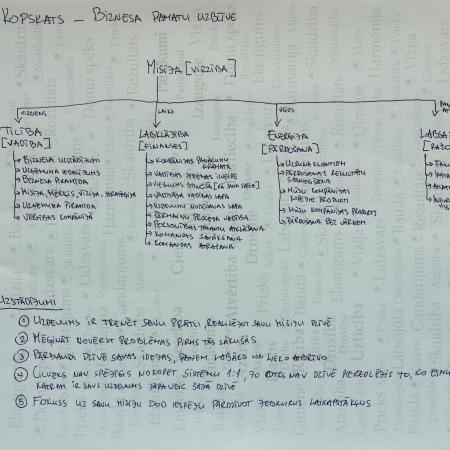 Ko mēs iegūstam no kopskata biznesa vadības sistēmai?
